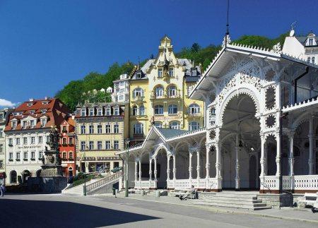 Karlovy Vary View